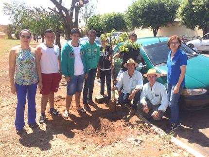 Programa Jovem Agricultor faz plantio de árvores