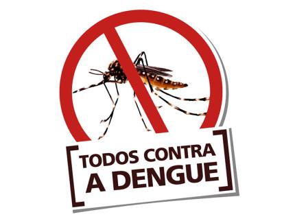 Dengue preocupa a região