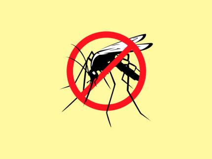 Seis cidades da região enfrentaram epidemia de dengue em 2015