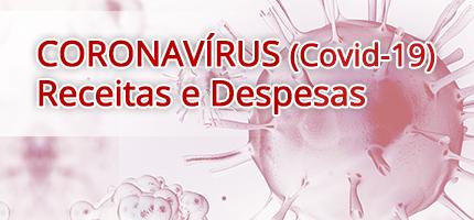 Receitas e Despesas Covid-19