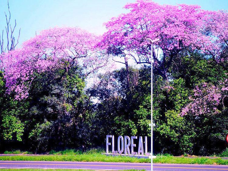 Floreal São Paulo fonte: www.newscom.inf.br